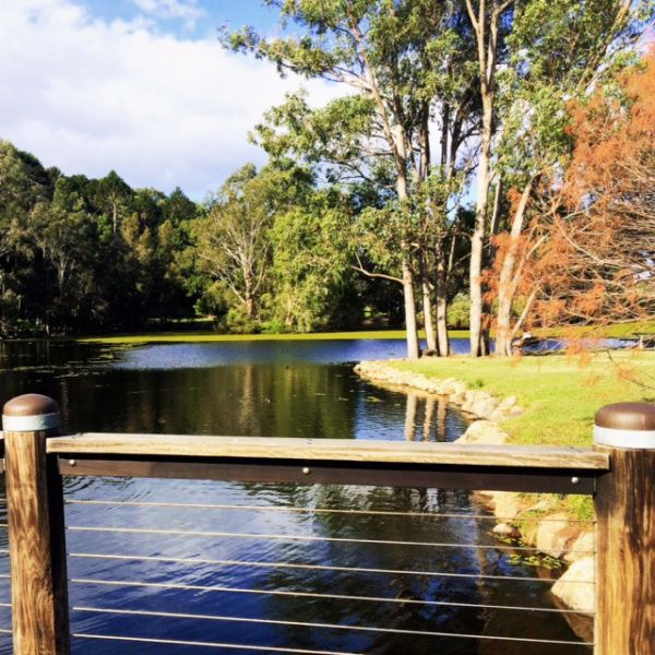 The Gold Coast Botanic Gardens in Benowa is a hidden gem. Its a must do if you're traveling with kids to the Gold Coast.