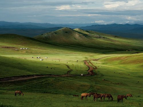 Mongolian Steppe. Nature at its most simplest. Beautiful!