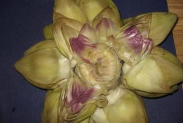 5 Minute Microwave Artichokes! | VegWeb.com, The World's Largest Collection of Vegetarian Recipes