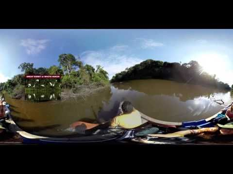 Virtual Reality may help save jaguar population  Hedonistic activities aside, scientists have begun using the technology for research.  A team of researchers from Queensland University of Technology and non-profit Lupunaluz Foundation hope to help save threatened jaguars in Peru.  A loss of habitat is causing the jaguar population to diminish, and the researchers want to find the and conserve the best jaguar habitat.  The team of self-described rookie researchers headed into the Peru…