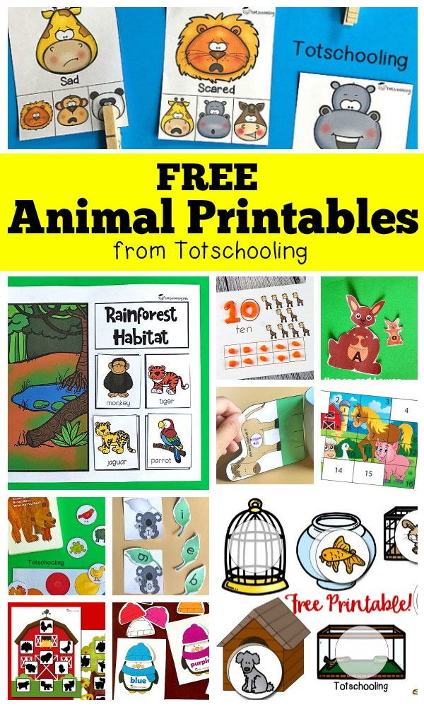 Free Animal Printables For Preschool Animal Activities