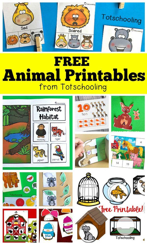 FREE Animal Printables for Preschool Animal activities