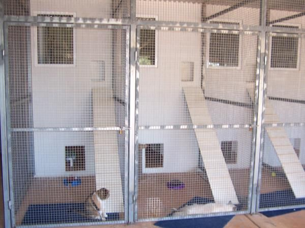 Boarding With Us-Broome Veterinary Hospital