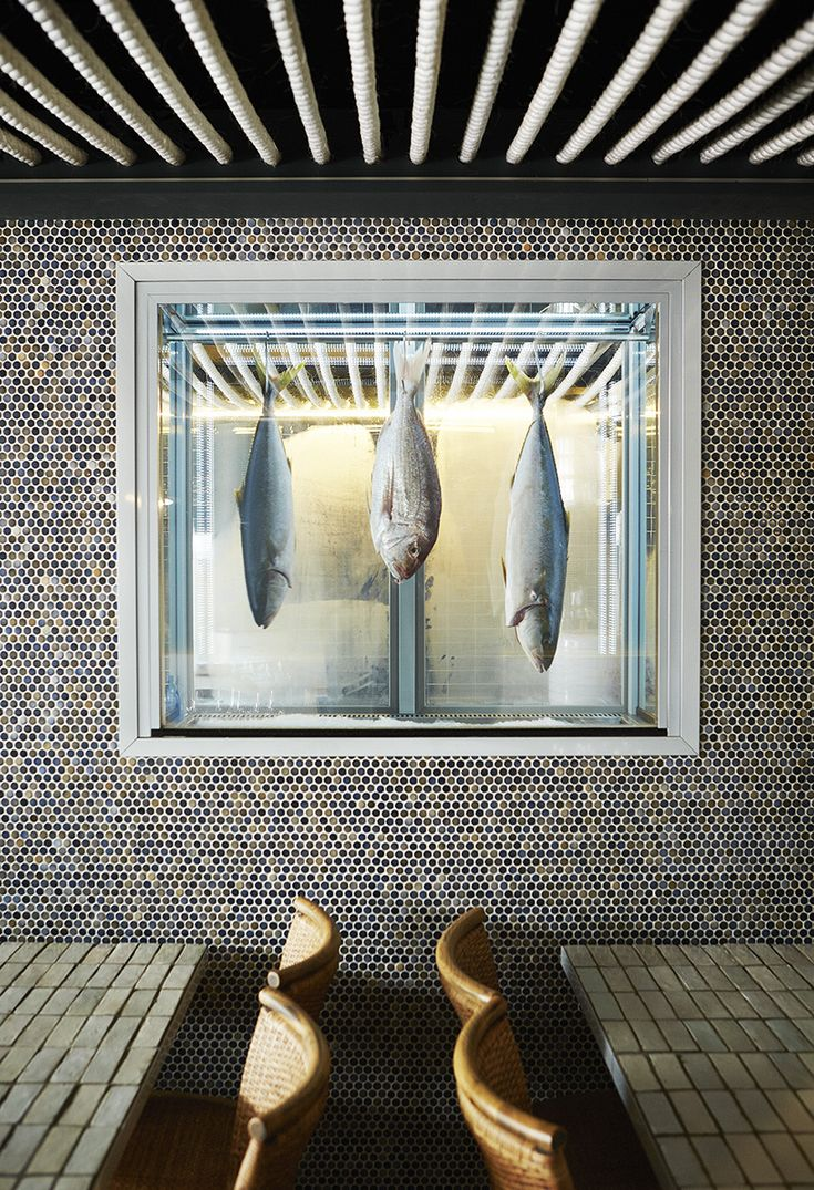 Hillarious If The Fish Are Stuffed Fakes. 5 Top New Designer Cafes
