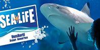 SeaLife / Helsinki
