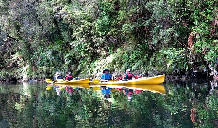 Kayaking up into the rainforest on Okarito Lagoon.