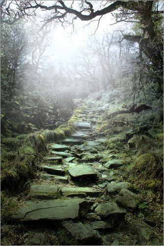 """Bild von Nadine Conrad - """"mystische Treppe"""""""