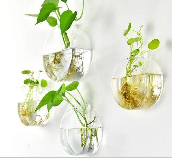 Image 1 Glazen Wanden Vazen Planten