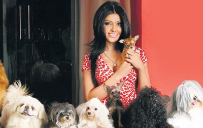Koena Mitra with her many Pooches and Chihuahua Dude. Pic/mid-day archives | #indipin