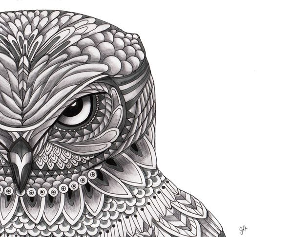 Owl Design Coloring Pages