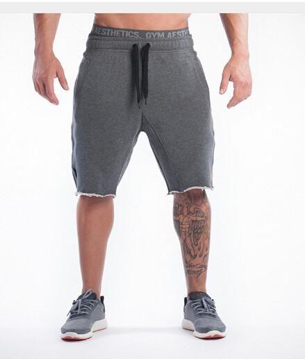 NANSHA 2017 Top Quality Men Casual Brand Gyms Fitness  Shorts Men Professional Bodybuilding Short Pants - 10 minus