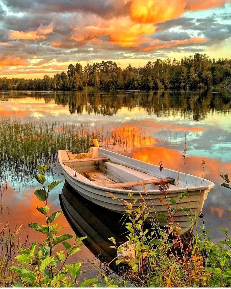 "Nature | Travel | Wildlife (@naturetravelwildlife) on Instagram: ""Sweden,  Follow @naturetravelwildlife for best nature pics!  Source: @amazing.destination…"""