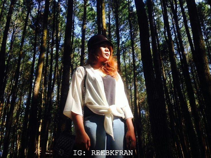 Hutan Pinus Imogiri, Bantul, Yogyakarta, Indonesia. Visit Indonesia - Indonesia itu indah.