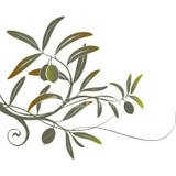 Olive Tattoo  I redesigned this and got it inked on my ankle in memory of my great grandmother Olive Christine'''