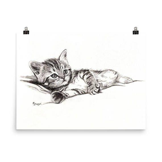 Katzchen Zeichnung Druck Katze Bleistift Zeichnung Niedlichen Mit