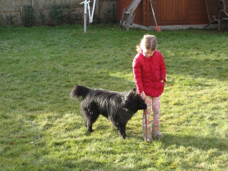 """Pieter, 16 december 2012    """"We willen even weer van ons laten horen. Wat zijn wij blij met hem. Pieter is inderdaad van alles te leren. Vrij gemakkelijk zelfs. Hij kan goed mee in de auto, kan goed alleen thuis blijven, maakt niets stuk, komt altijd als je 'm roept. Ook nemen we hem mee in huizen waar honden wonen of komen er honden bij ons thuis. Dat gaat allemaal goed. Fijn dat jullie toen meegeholpen hebben om een hond voor ons uit te kiezen. Want dit is 'm!"""""""