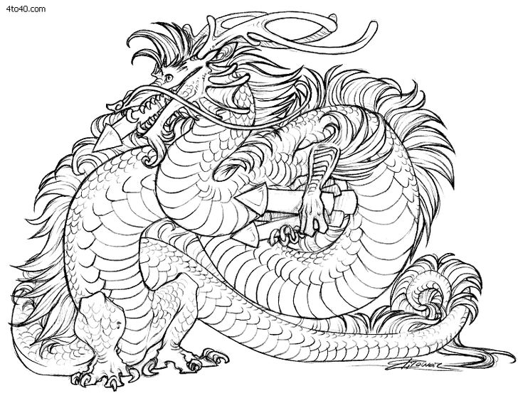 Tiger Dragon Coloring Pages For AdultsDragonPrintable Coloring