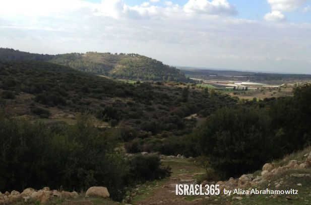 the historic Elah Fortress (in Hebrew, Khirbet Qeiyafa). The ruins were uncovered in 2007 just miles from the Israel365 office in Beit Shemesh.Archaeologists believe it may contain the ruins of King David's palace.