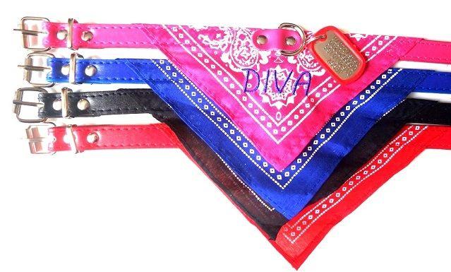 Halsband met bandana en een mini dogtag.  op de bandana kunt u de naam van uw hond laten borduren en op de mini dogtag zet u uw persoonlijke gegevens zoals telefoonnummer