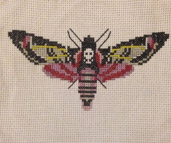 Deaths Head Moth Cross Stitch sample. No Frame included. Not my own pattern used.