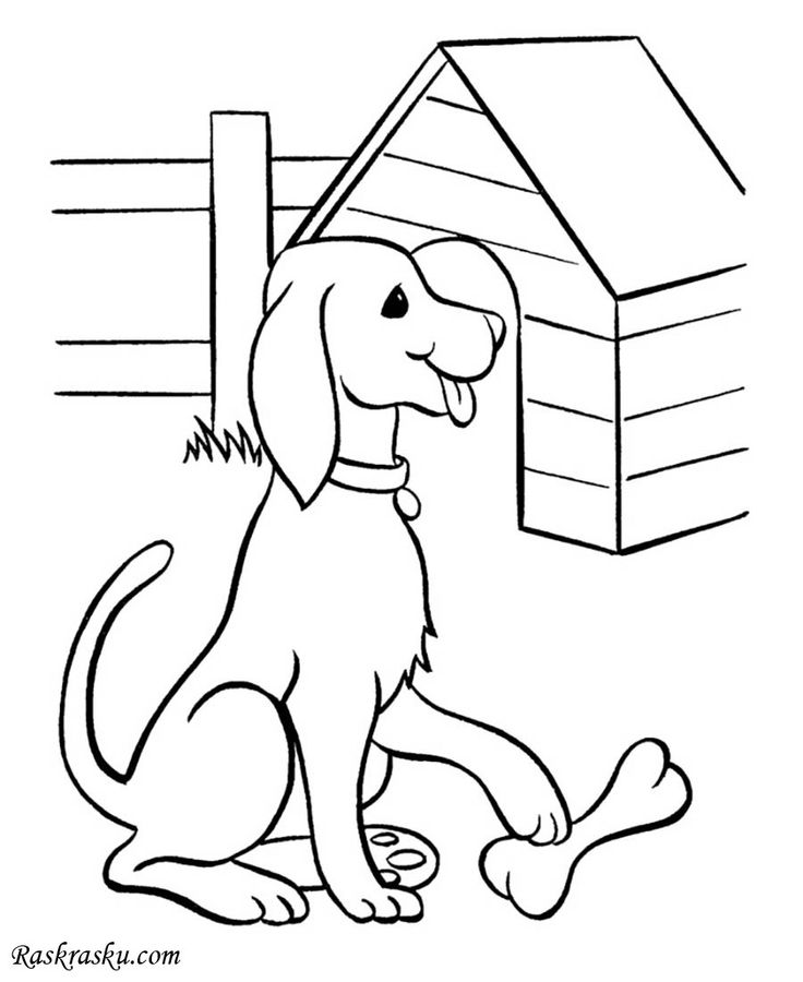 Раскраска Собака и будка скачать и распечатать бесплатно ...