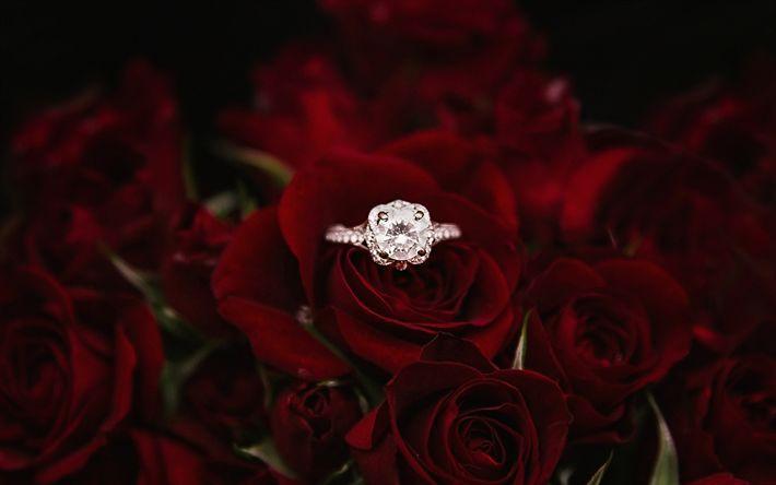 Download wallpapers engagement ring, burgundy red roses, floral background, gem, decoration, wedding concepts
