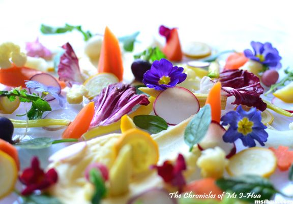 medley of vegetables, flowers, and herbs (a tribute to le gargouillou)