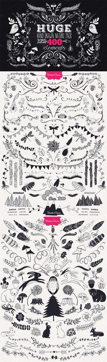 Hand drawn Nature Pack Elements by Studio Chem on Creative Market: