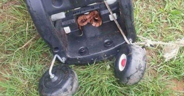 Texas Man Finds Something Terrifying Under A Child's Toy. Now He's Warning Parents - Useful Tips For Home