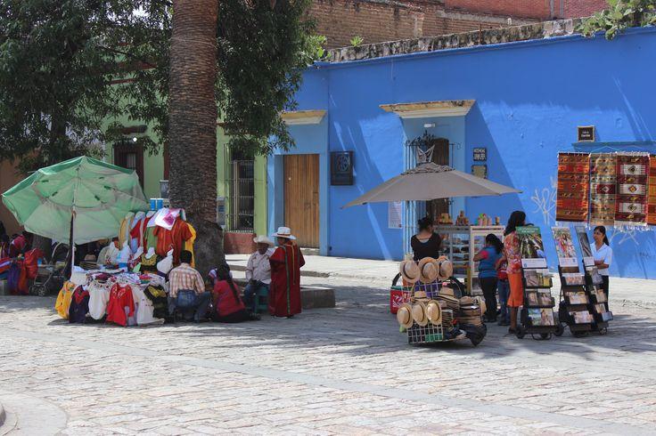 Volunteer program in amazing Mexico with Love Volunteers!