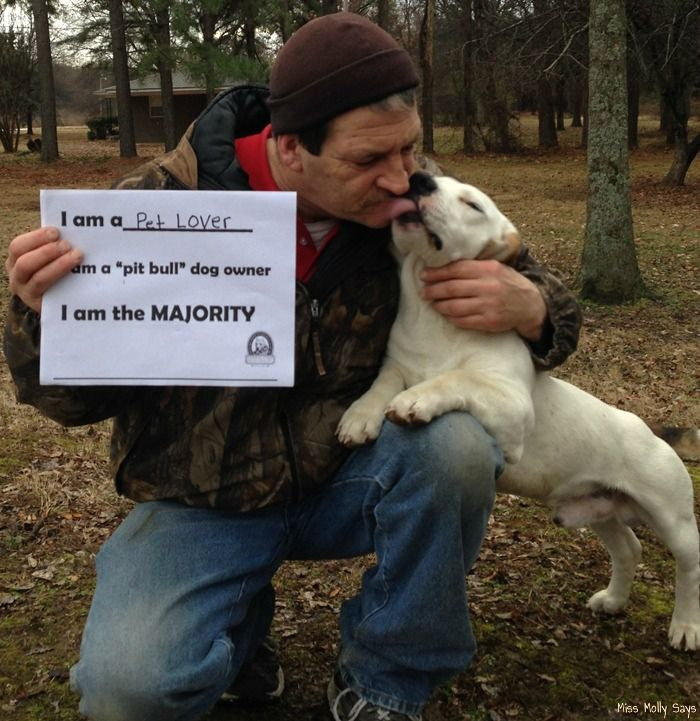 The Majority Project: Let's End Breed Specific Legislation! #TheMajorityProject - Miss Molly Says