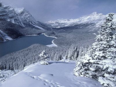 This photograph provides a spectacular view of Peyto Lake in the winter time, completely surrounded by snow cover. Peyto Lake is in Banff National Park in the Canadian Rockies.Banff Canada, Canadian Rocky, Complete Surroundings, Native Land, Covers Mts, Alberta Canada, Snow, Peyto Lakes, Banff National Parks