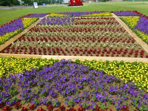 Garden Patterns Ideas 116 best quilt garden trail images on pinterest | indiana, trail