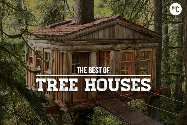 Forever Young: The 18 Greatest Tree Houses For Adults