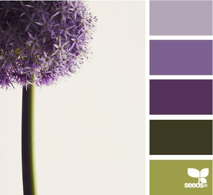 allium hues-awesome website for color pallets.....