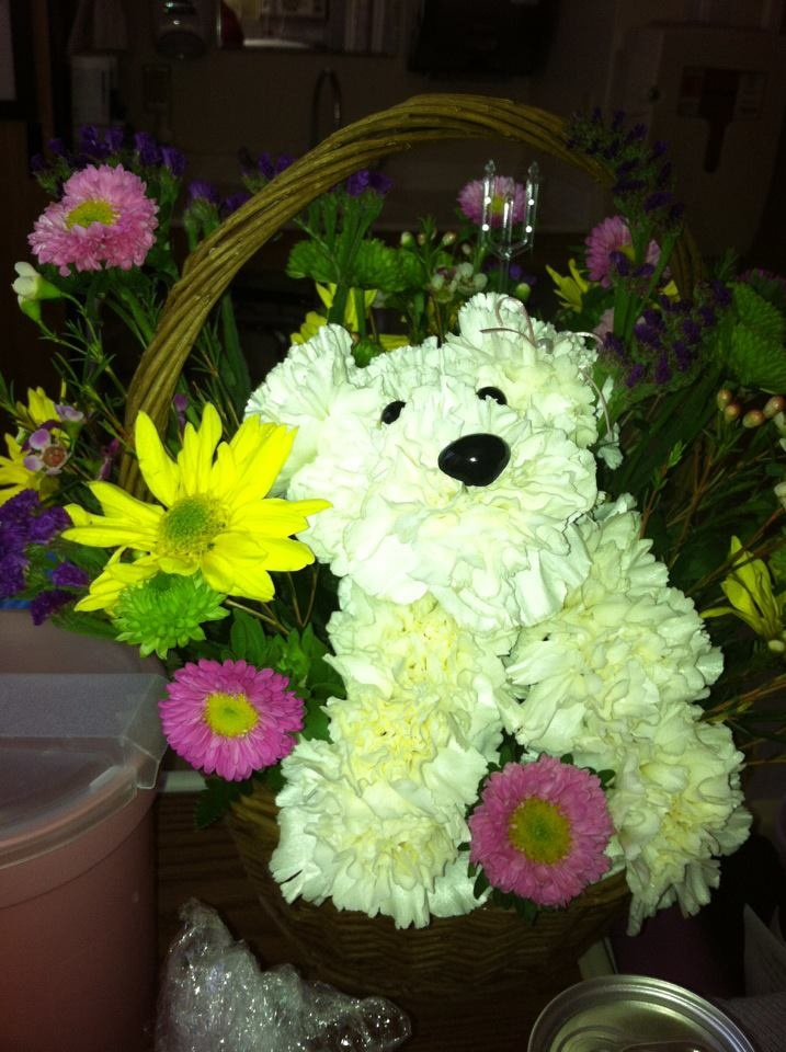 Puppy Dog Bouquet - FTD Flowers