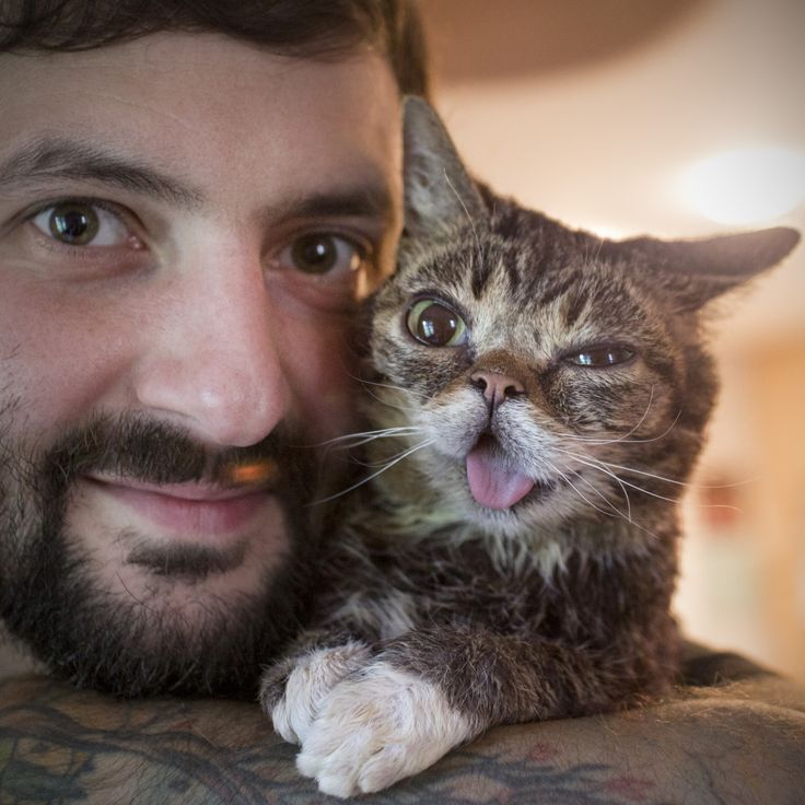 Help BUB share the magic of pet adoption today with a photo of your shelter pet using #RememberTheRescue