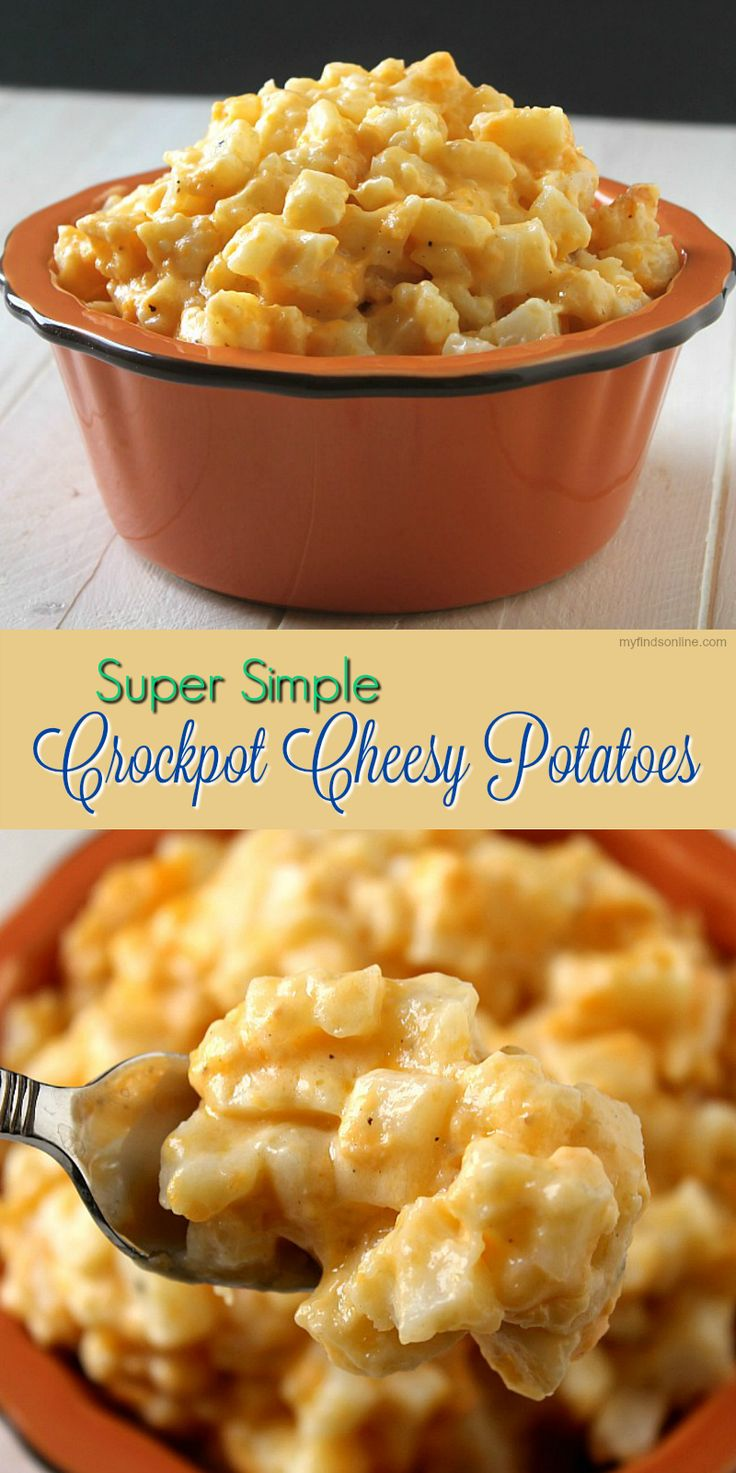 3293 best foodpotatoes images on pinterest baby potatoes this simple crockpot cheesy potato recipe makes the most delicious tender morsels covered in a creamy cheese sauce forumfinder Gallery