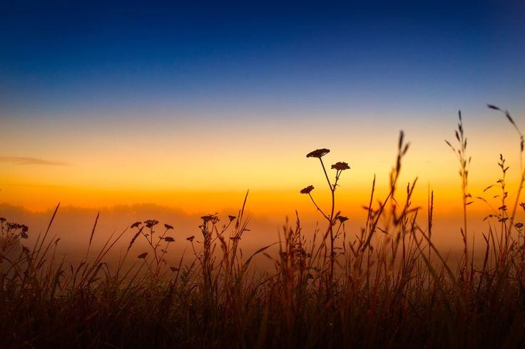 Morning breath by Anastasia Krylova on 500px