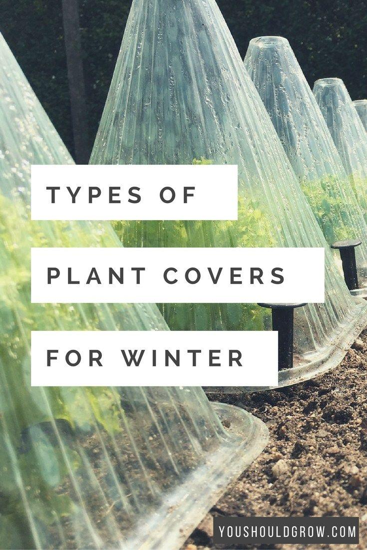 3007 best taf vegetable gardening images on pinterest garden