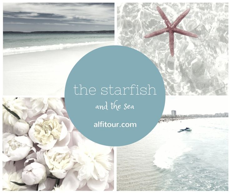 the starfish and the sea...- alfitour.com