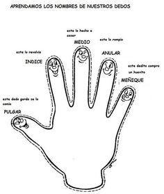 Nombre de los dedos de la mano
