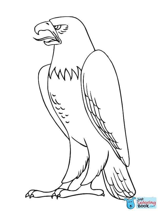 Bald Eagle Coloring Page Free Printable Coloring Pages Throughout North American Bald Eagle Coloring Pages Bird Coloring Pages Animal Templates Coloring Pages