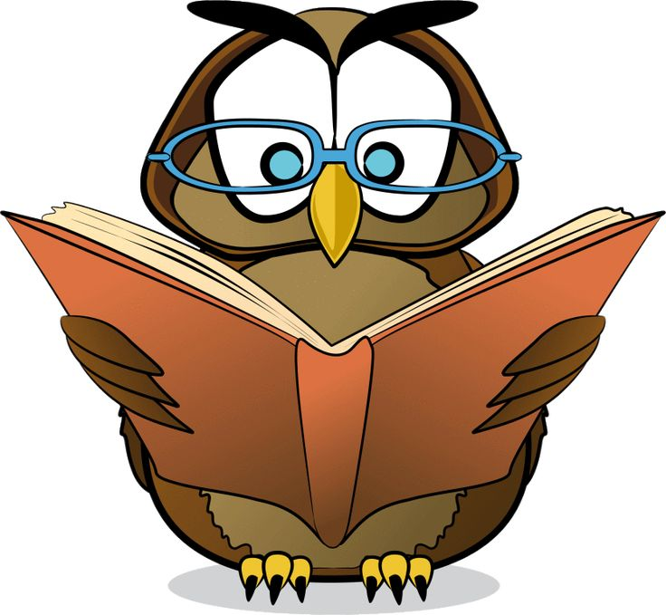 Owl Reading Clipart Free