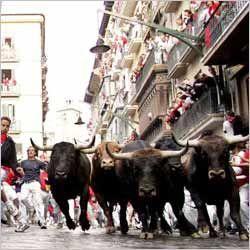 San Fermin, Spain. Running of the Bulls
