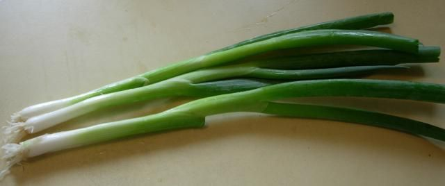 What are Scallions and How to Use in Chinese Recipes