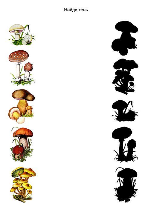 задание грибы картинки изготовление декораций