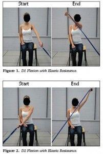 D1 & D2 flexion PNF