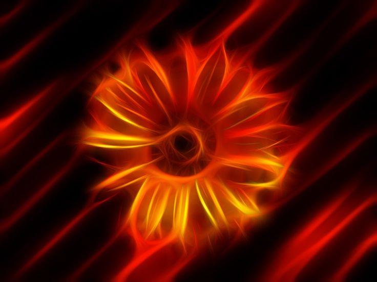 Virág, Tüzes, Absztrakt, Művészet, Színes, Fraktálok