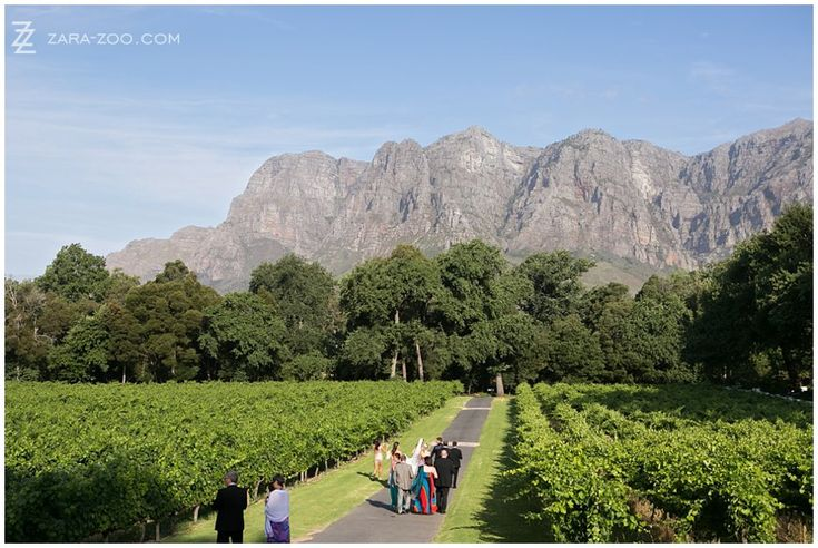 #Molenvliet Wine Estate near Stellenbosch, South Africa is one of the most scenic wedding venues in the Cape Winelands.  See more of this wedding on the ZaraZoo Photography blog http://www.zara-zoo.com/blog/molenvliet-wedding-photos-stellenbosch